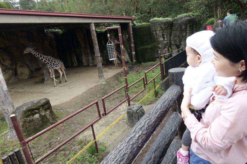 Light at Taipei Zoo 11
