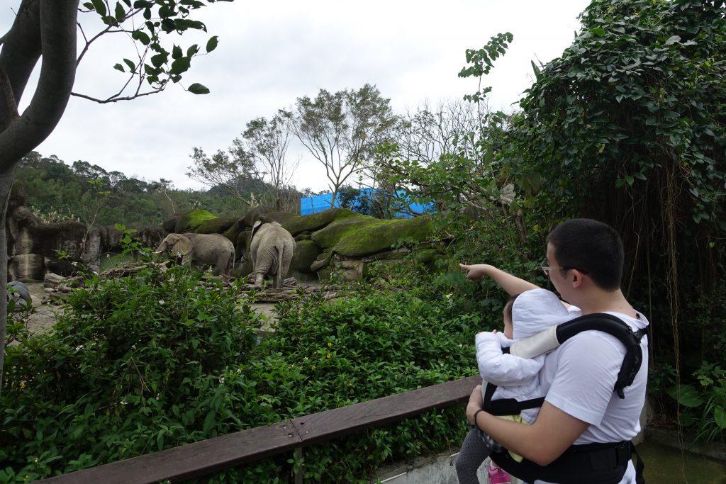 Light at Taipei Zoo 12