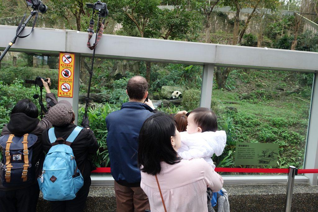 Light at Taipei Zoo 4