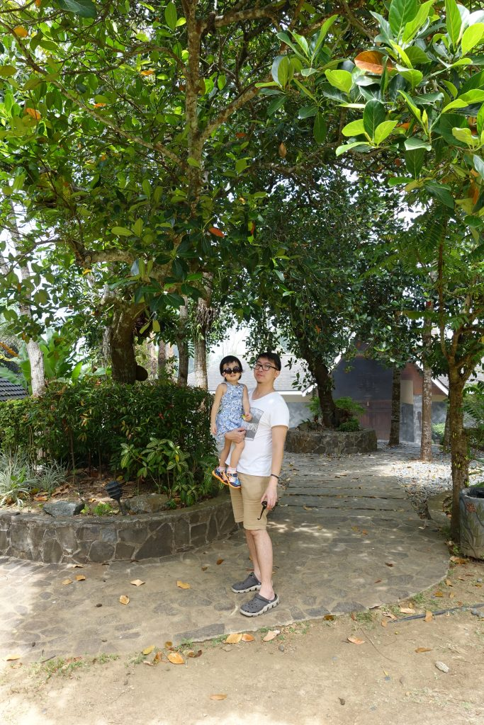 Cintai Corito's Garden 6