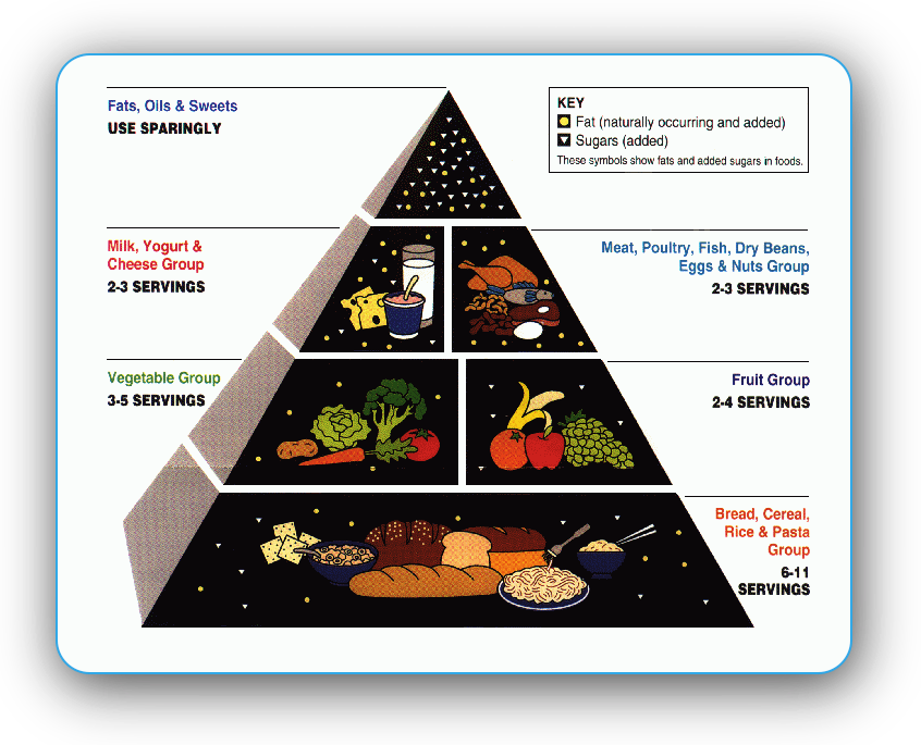 The Food Pyramid For Pregnant Women