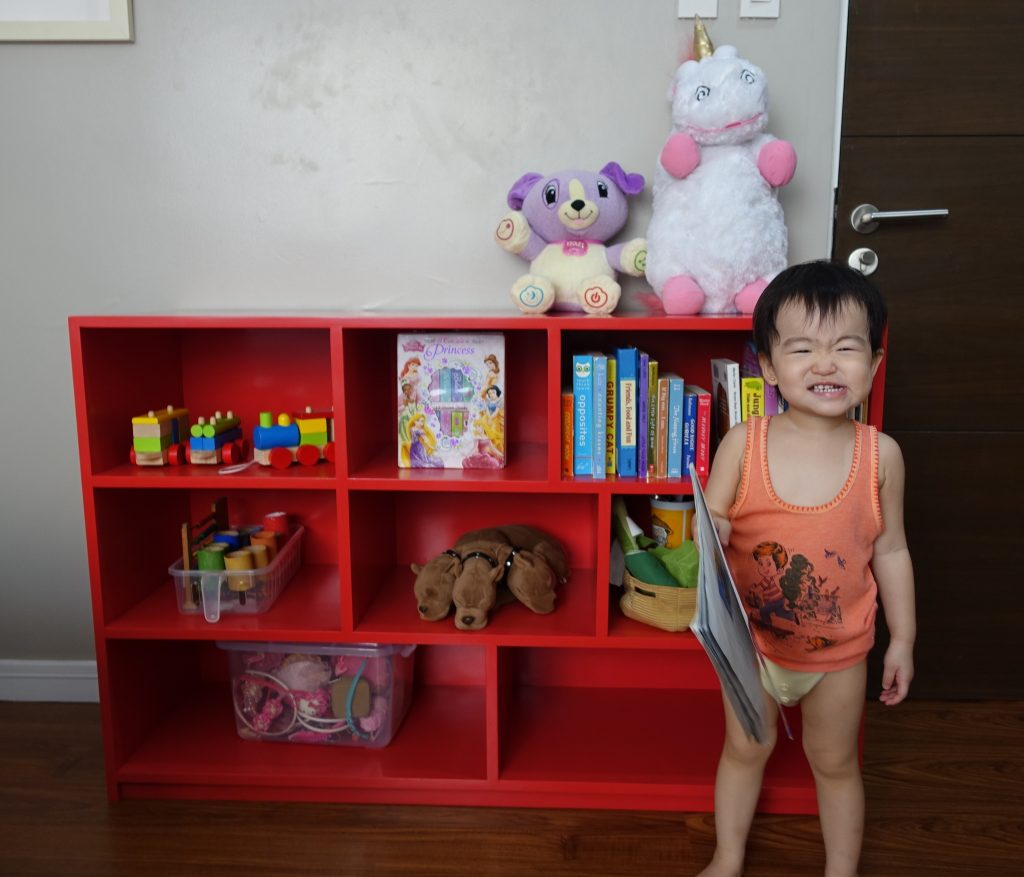 custom-made-toy-organizer