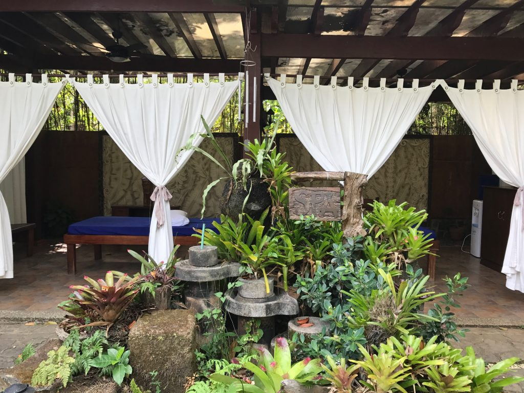 Cintai Corito's Garden 32