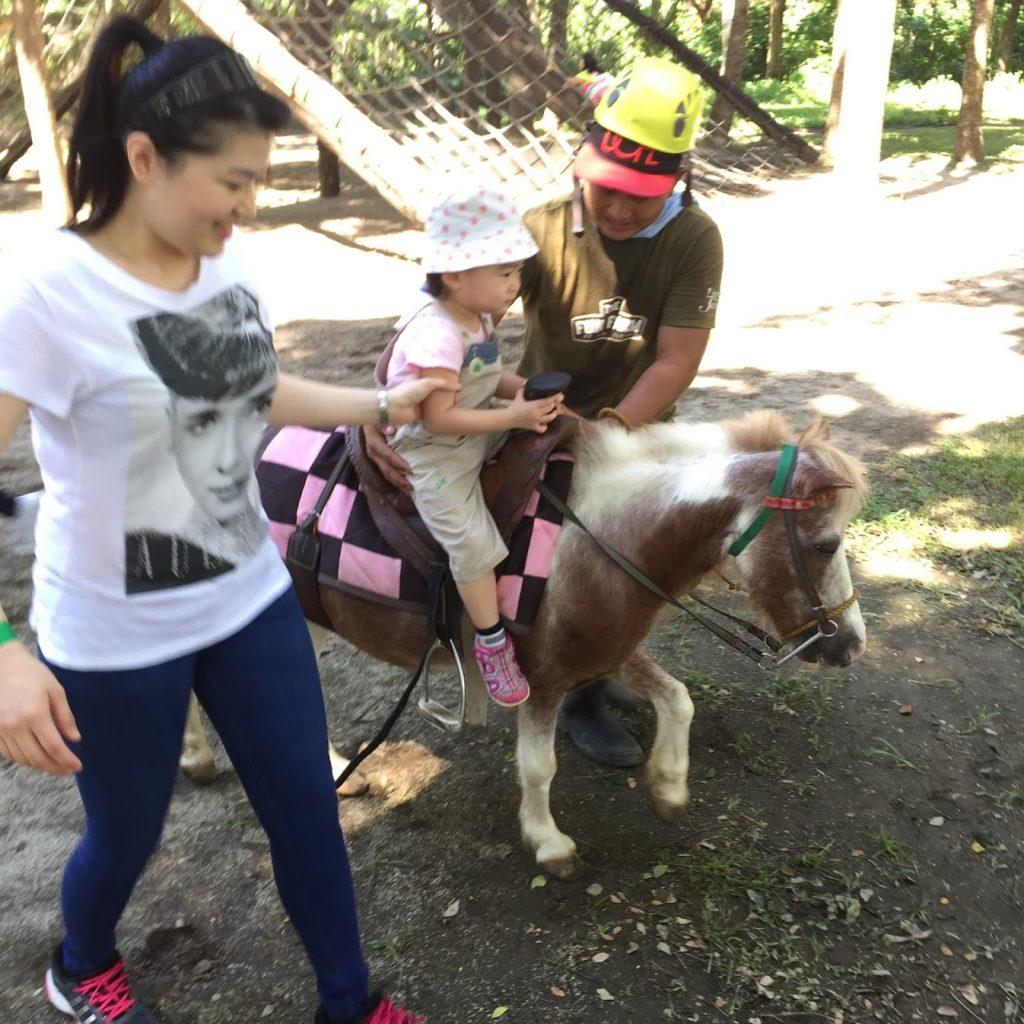 The fun farm at sta. Elena 2