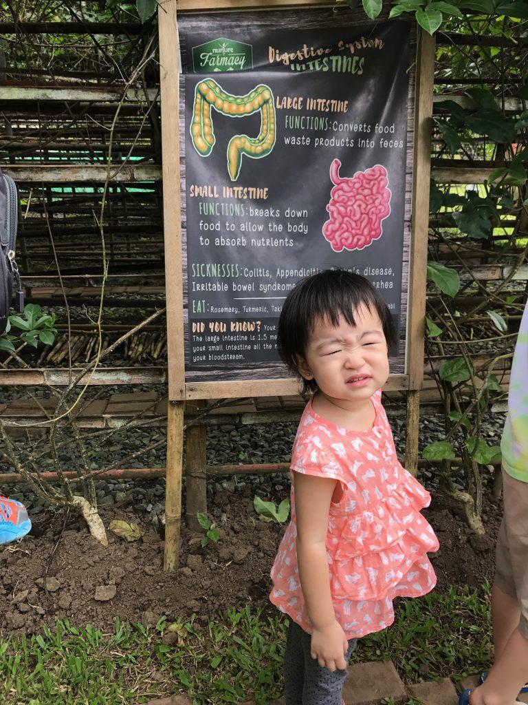 Farm at Nurture Farmacy 2
